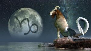 horoscopo-capricornio-2014